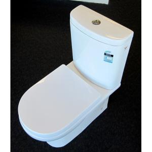 Wall Faced Toilet with Soft Close Seat and Adjustable Set Out
